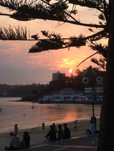 Manly sunsets